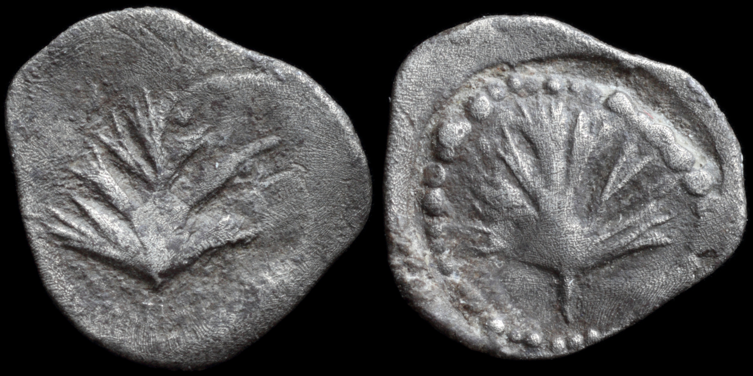 /Files/Images/Coinsite/CoinDB/1439_Selinus.jpg