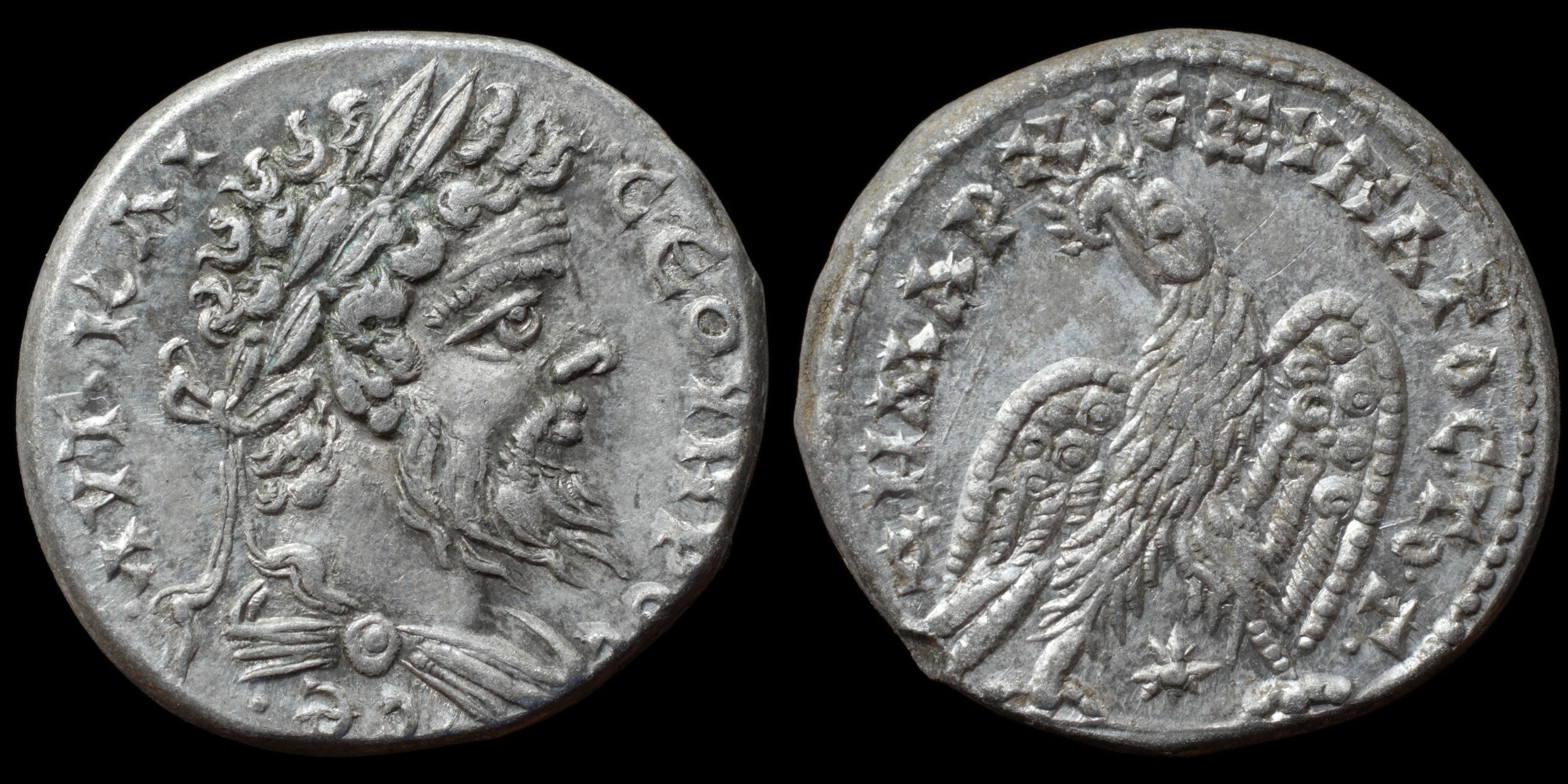 /Files/Images/Coinsite/CoinDB/1484_Septimius_Severus_Laodicea.jpg