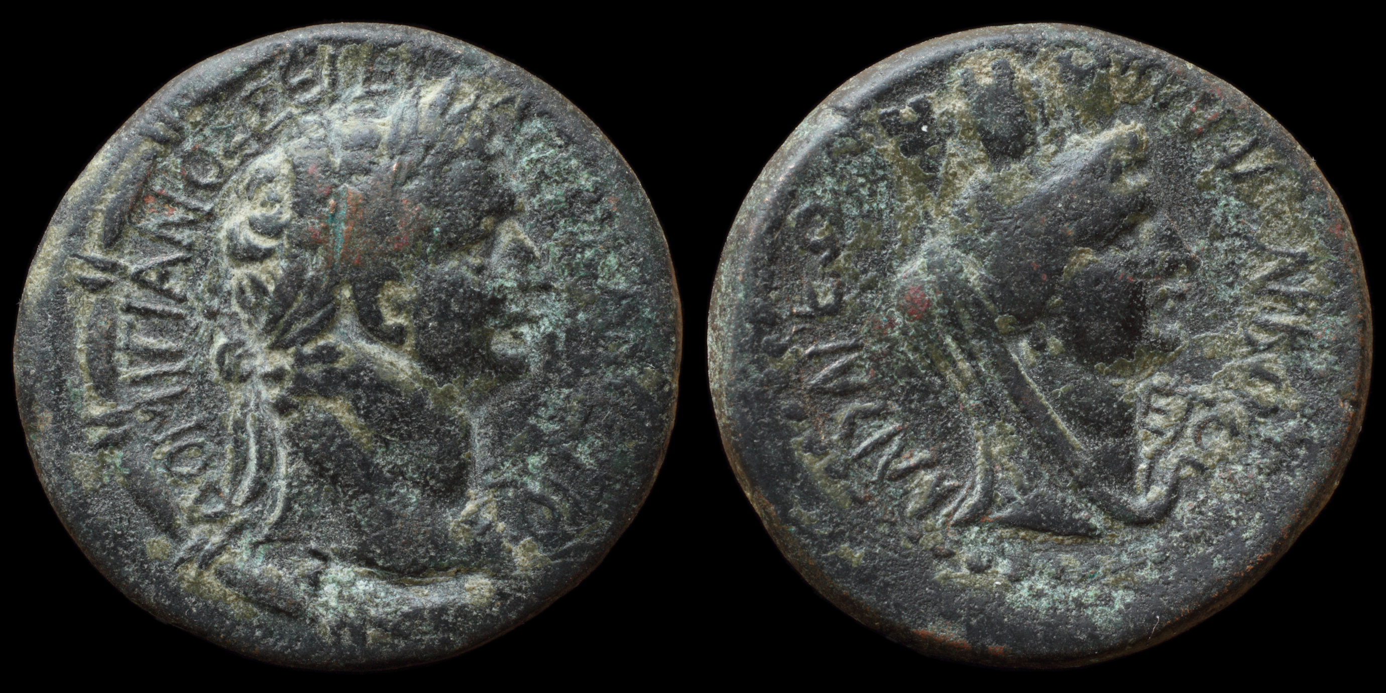 /Files/Images/Coinsite/CoinDB/1645_Domitian_Anazarbus.jpg