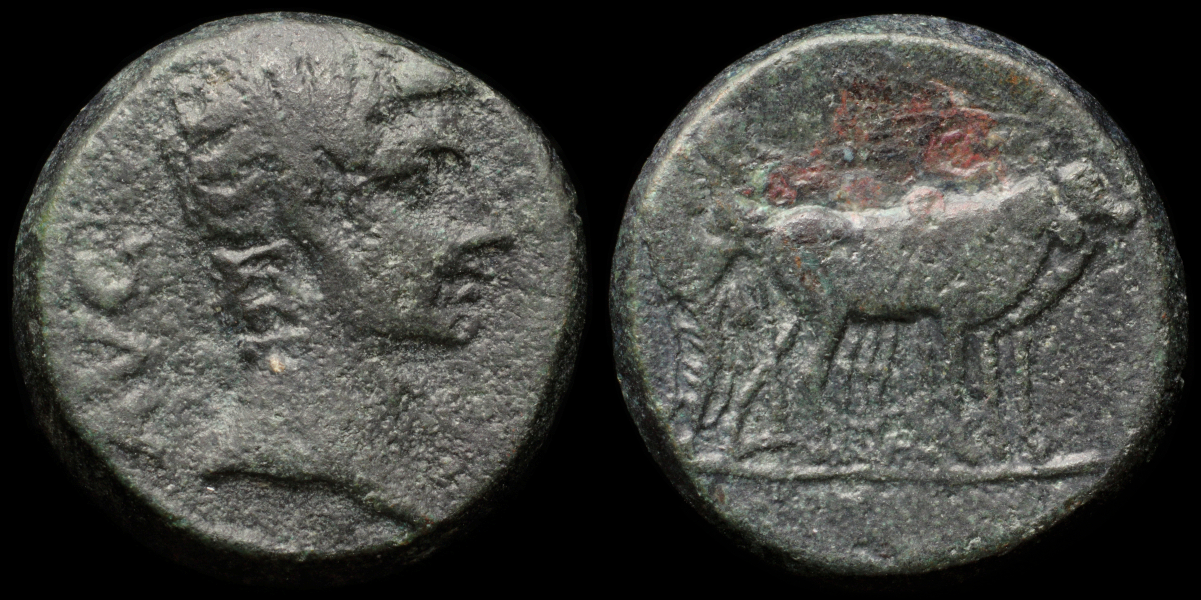 /Files/Images/Coinsite/CoinDB/892_Augustus_Philippi.jpg