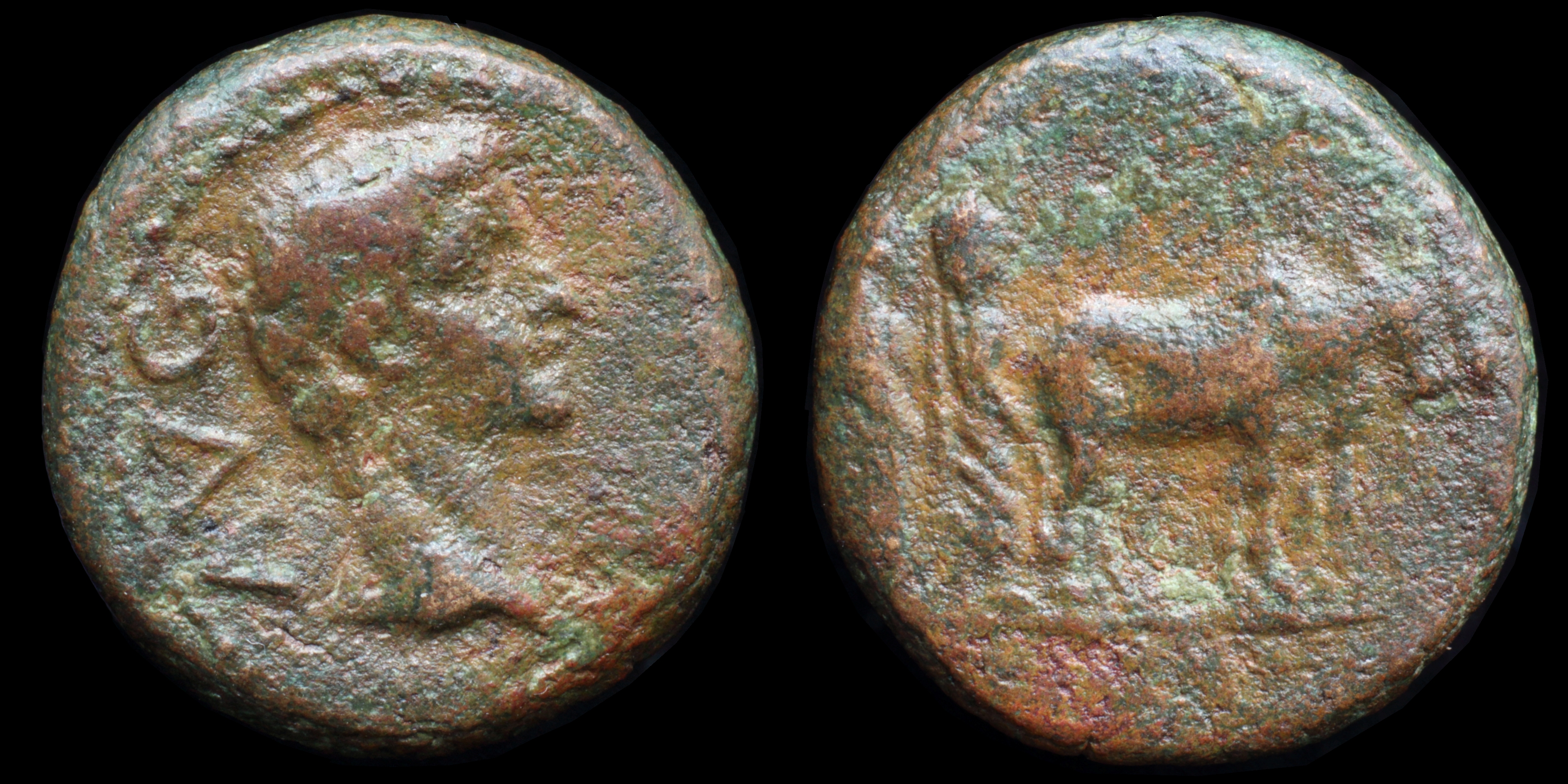 /Files/Images/Coinsite/CoinDB/893_Augustus_Philippi.jpg