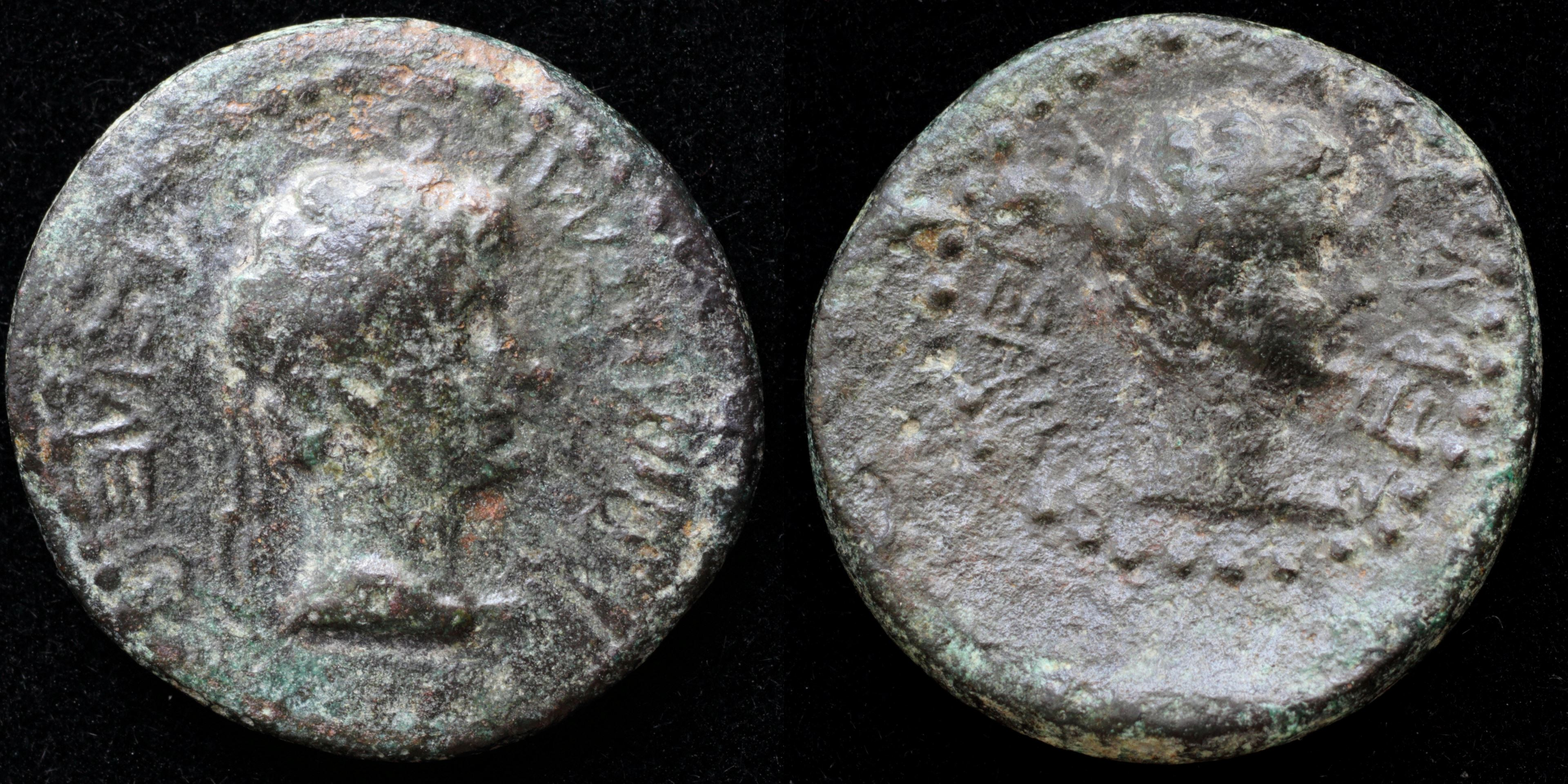 /Files/Images/Coinsite/CoinDB/Roemetalces_I_Augustus.jpg